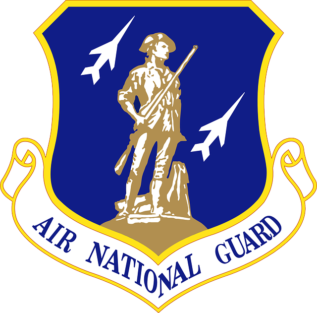 Air National Guard Emblem