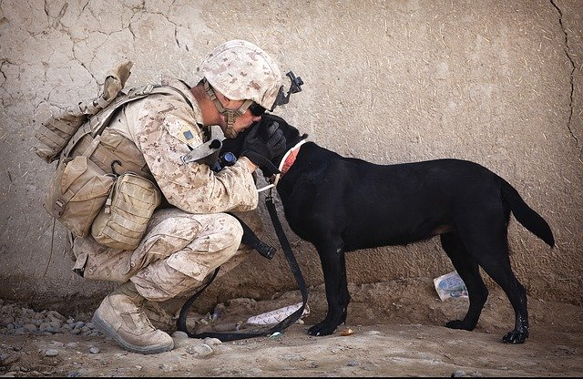 Soldier with service dog